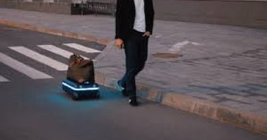 Travelmate Robotic Suitcase Carries Itself