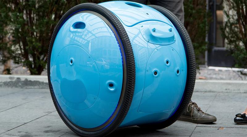 Personal Cargo Robot