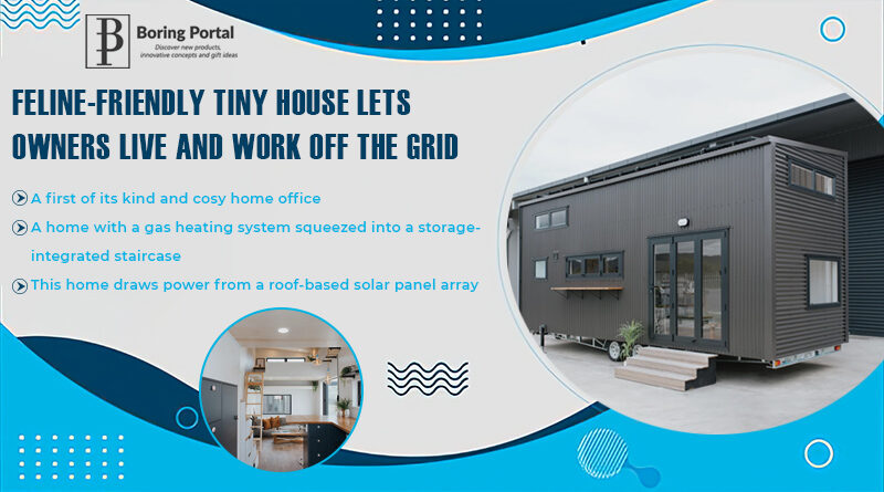 Feline-friendly-tiny-house-lets-owners-live-and-work-off-the-grid